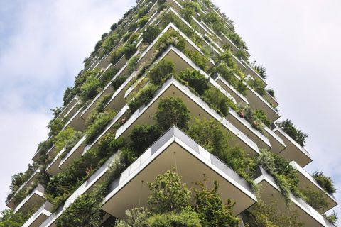 floresta vertical - projeto doBosco Verticale